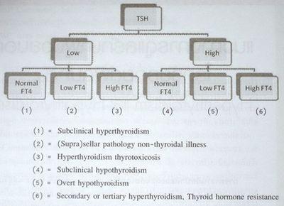 การรักษา Hyperthyroidism สมอง adenomas ของต